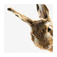 228x228_serviette-easter-bunny-von-jana-edelight