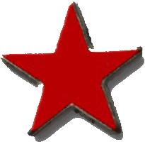 coalition_flag